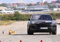 Porsche Macan показал неожиданно плохой результат в лосином тесте (видео)