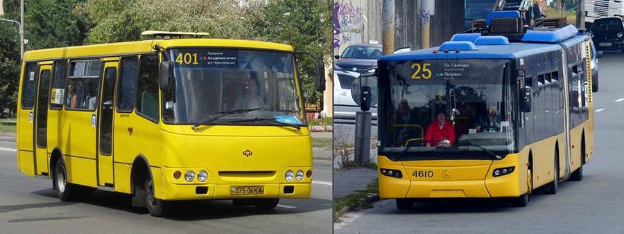 автобусы отмеченные знаком проездного