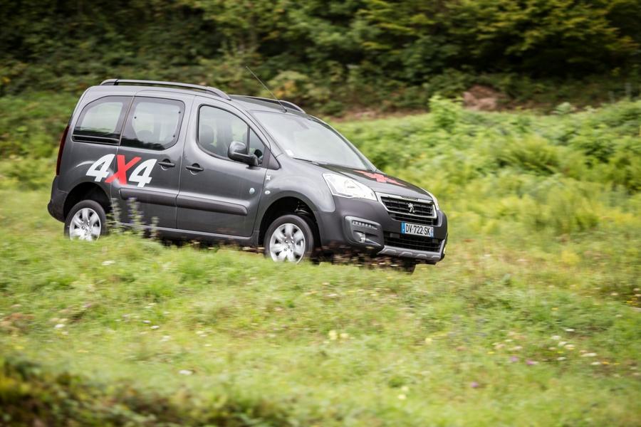 Peugeot Partner 4х4 Dangel