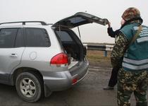 В Украине участились случаи ввоза авто по поддельным документам