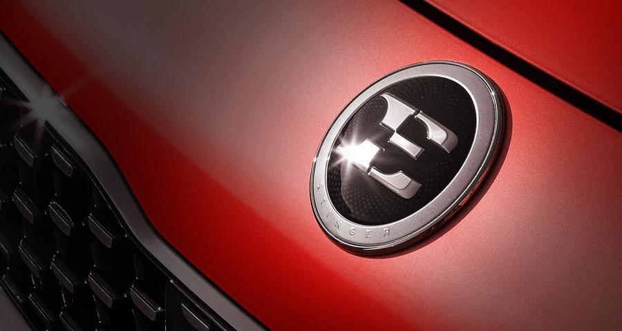 Логотип Kia Stinger